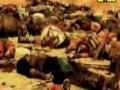 Ali Akbar Kahan Ho Tum - Ali Safdar - Nauha 1433 - Urdu