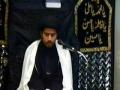 education media and politics majlis shadate imam sajad by syed reza jan kazmi 2011 - urdu