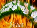 Words of Wisdom | The bridge of Siraat - English