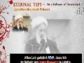 Ayatollah Mojtahedi Tehrani (R.) - Sei ein Anhänger Imam Hussayns - Persian sub German