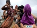 [04 Sept 2012] Myanmar Rohingyas in need of intl support - English