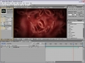 [After Effects Tutorial] P2. Medical Zoom 02 - English