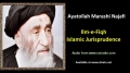[ENGLISH] Islamic Jurisprudence - Excerpt from Ayatullah Marashi Najafi Speech - English