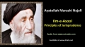 [ENGLISH] Principles of Jurisprudence - Excerpt from Ayatullah Marashi Najafi Speech - English