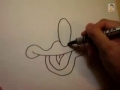 How to Draw Donald Duck face Easily - All Languages Other