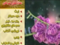 پیشگیری از سرطان Cancer Prevention - Farsi