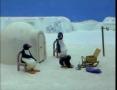 Kids Cartoon - PINGU - Pingu Builds an Igloo - All Languages Other