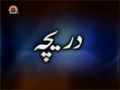 [12 Feb 2013] A Gateway to Technology - Daricha - دریچہ - Urdu