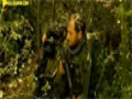 Nice Vision - Eng Sub (HD) | طيف اللقاء - فيلم لبناني عن المقاومة - Arabic