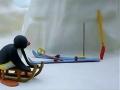 Kids Cartoon - PINGU - Pingu Plays Hide And Seek - All Languages Other