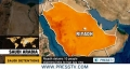 [23 May 13] KSA, Bahrain royals fear Shia influence - English