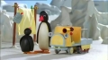Kids Cartoon - PINGU - Pingu lets Himself go - All Languages Other