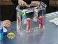 Float or Sink - Cool Science Experiment - English
