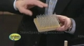 Bed of Nails - Sick Science - English