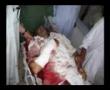 Labaik Ya Hussain - Martyrs of Parachinar and d.i.khan part2