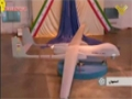 [18 Nov 2013] الجمهورية الايرانية تكشف عن طائرة فطرس بلا طيار الجديدة - A