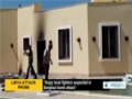 [29 Dec 2013] Al Qaeda did not carry out last year attack on the US consulate in the Libya - English