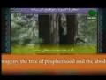 Prophet Mohammed - A beautiful Dua - Arabic Sub Persian English