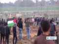 [17 Jan 2014] israeli soldiers injure 3 Gaza protesters - English