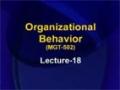 [18] Organizational Behavior – Urdu