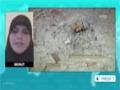 [25 Auig 2014] Israel shells southern Lebanon after 2 rockets hits northern Israel - English