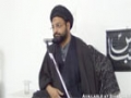 [Majlis 9][Last] Philosophy of Battle of Karbala - 1st November 2014 - Moulana Syed Taqi Raza Abedi - Urdu