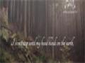 Ya Fatima - Sayed Ali Al Hakeem - English