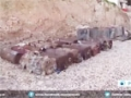 [16 March 2015] Rush footage: Syrian troops defuse explosive devices in Idlib countryside - English