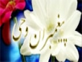 [23 March 2015] Paighambar-e-Wahi | پیغمبرانِ وحی | Tafsir Of Quran | Urdu