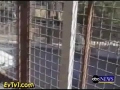 Israeli Taunting Caged Palestinians - English