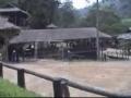 Elephants Playing Football-English