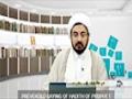 Muwiya Accomplishment In Islam see description - Farsi