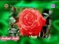 Ghadeer Festivities - Leaders Message of Unity - Other News - 17Dec08 - English